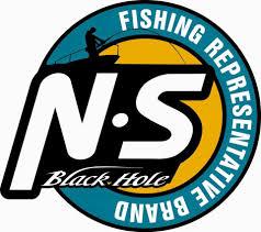 NS Blackhole